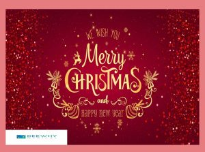 Merry Christmas Stay Safe and Happy New Year 2021